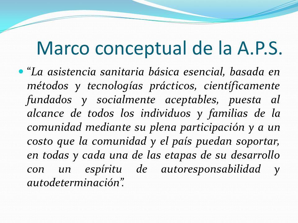 Marco conceptual de la A.P.S.