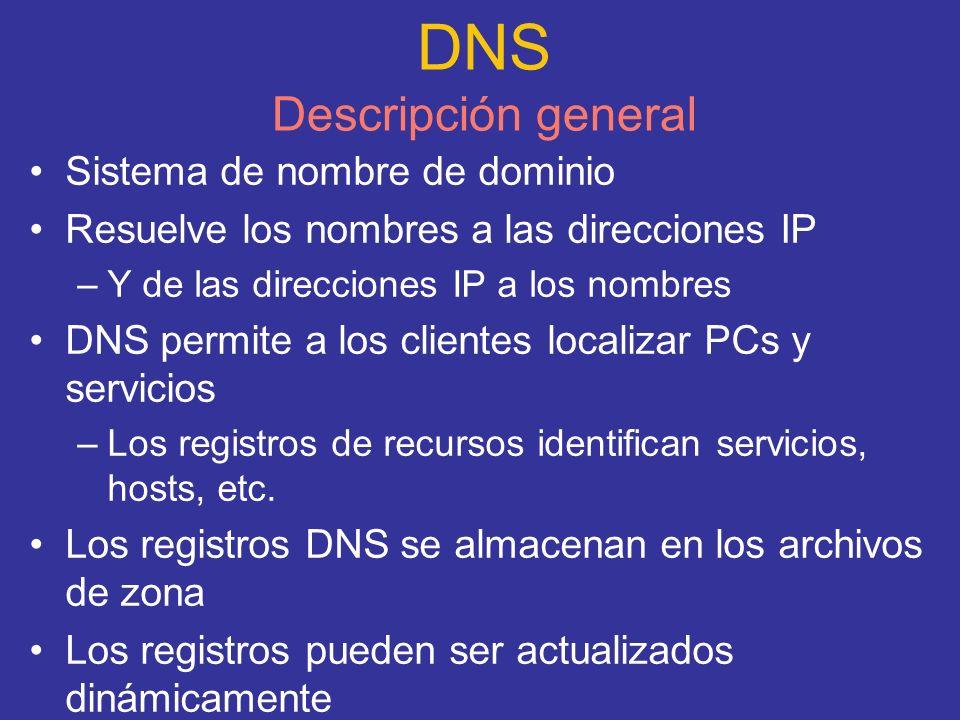 DNS Descripción general