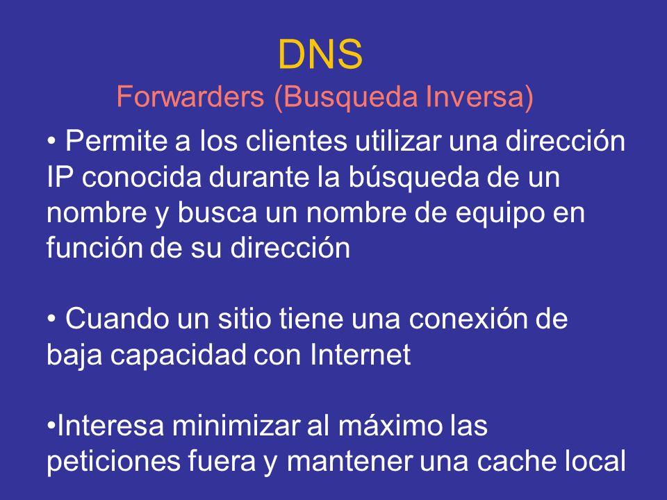 DNS Forwarders (Busqueda Inversa)