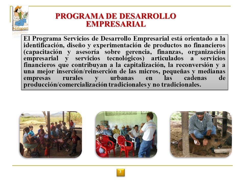 PROGRAMA DE DESARROLLO EMPRESARIAL