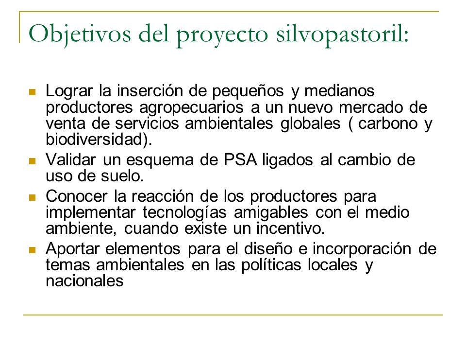 Objetivos del proyecto silvopastoril: