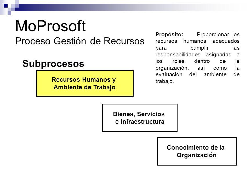 MoProsoft Proceso Gestión de Recursos