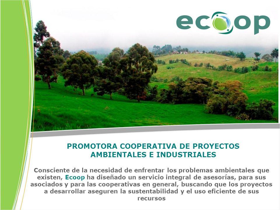 PROMOTORA COOPERATIVA DE PROYECTOS AMBIENTALES E INDUSTRIALES
