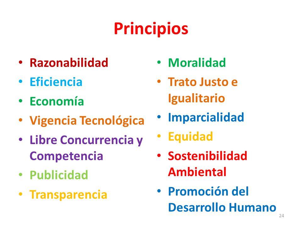 Principios Razonabilidad Eficiencia Economía Vigencia Tecnológica