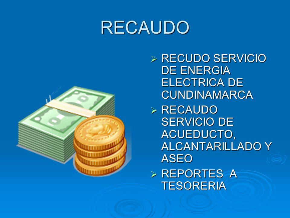 RECAUDO RECUDO SERVICIO DE ENERGIA ELECTRICA DE CUNDINAMARCA