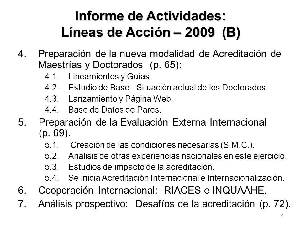 Informe de Actividades: Líneas de Acción – 2009 (B)