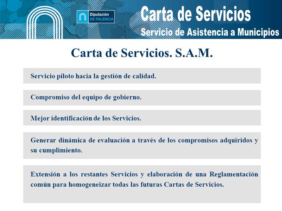 Servicio de Asistencia a Municipios