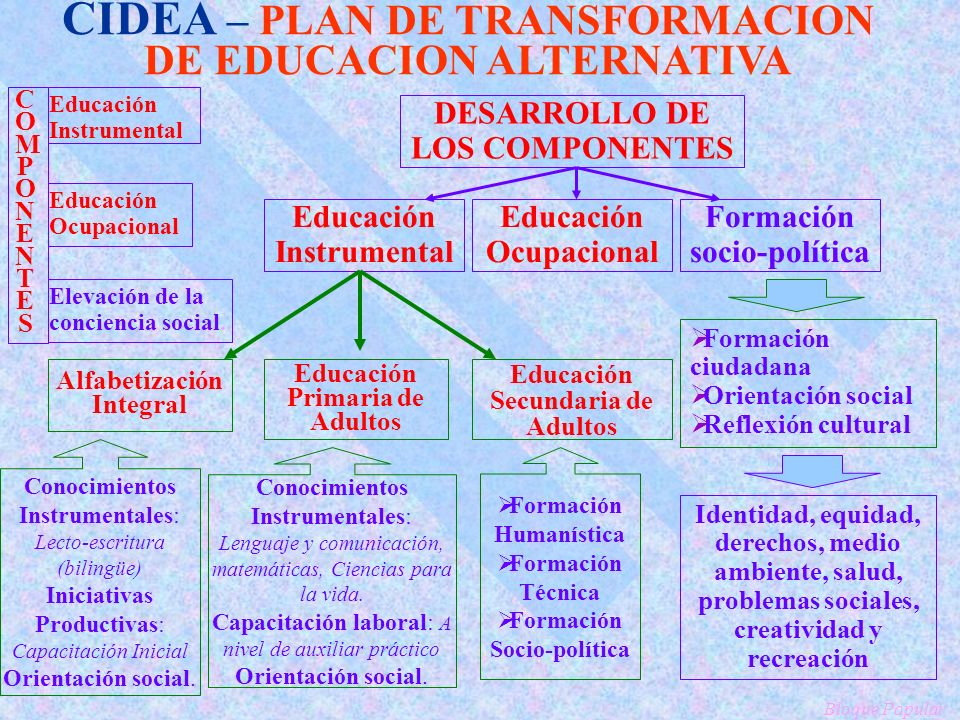 CIDEA – PLAN DE TRANSFORMACION DE EDUCACION ALTERNATIVA