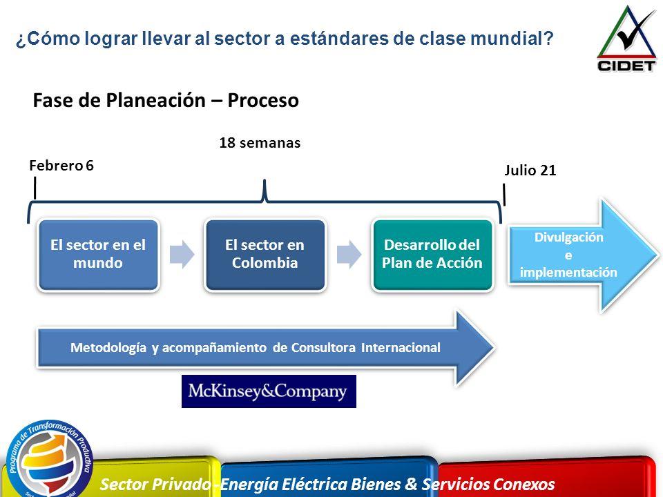 Desarrollo del Plan de Acción