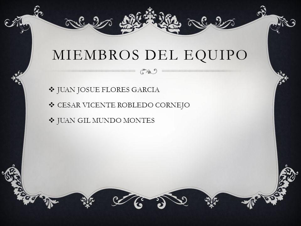 Miembros del equipo JUAN JOSUE FLORES GARCIA