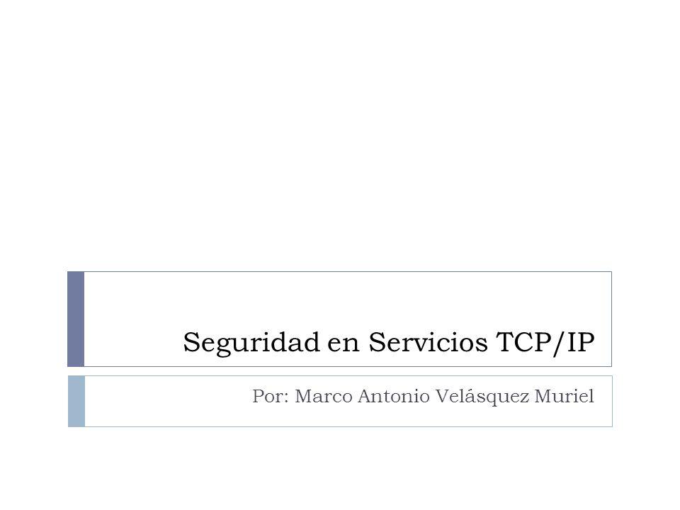 Seguridad en Servicios TCP/IP