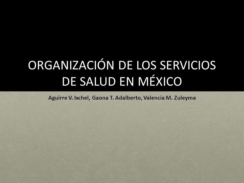 ORGANIZACIÓN DE LOS SERVICIOS DE SALUD EN MÉXICO