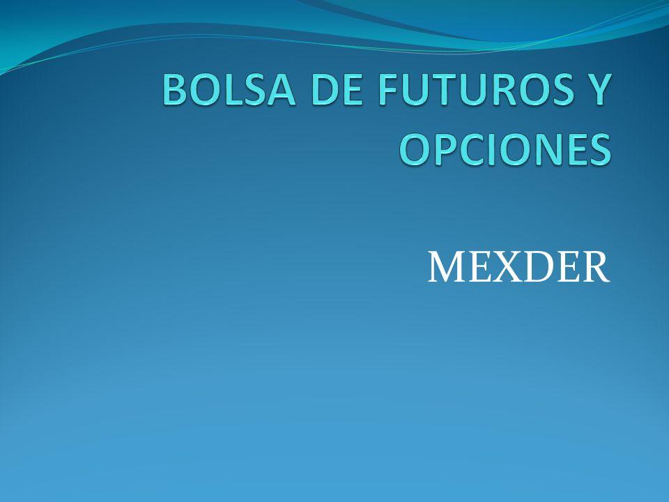 BOLSA DE FUTUROS Y OPCIONES