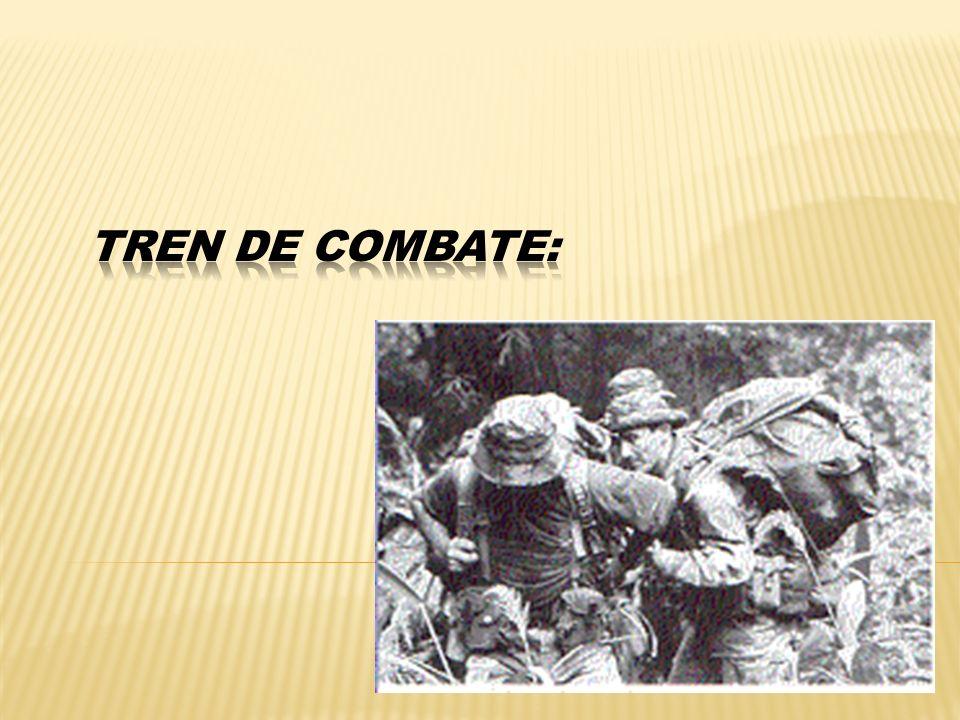 Tren de combate: