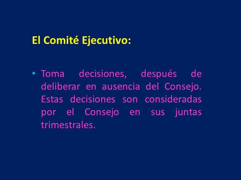 El Comité Ejecutivo: