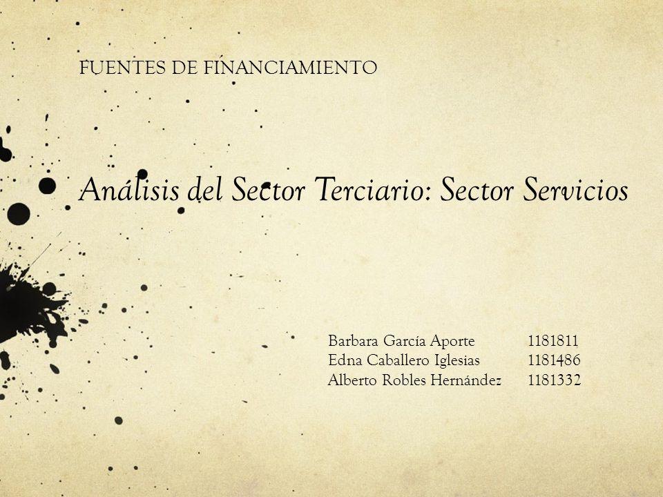 Análisis del Sector Terciario: Sector Servicios
