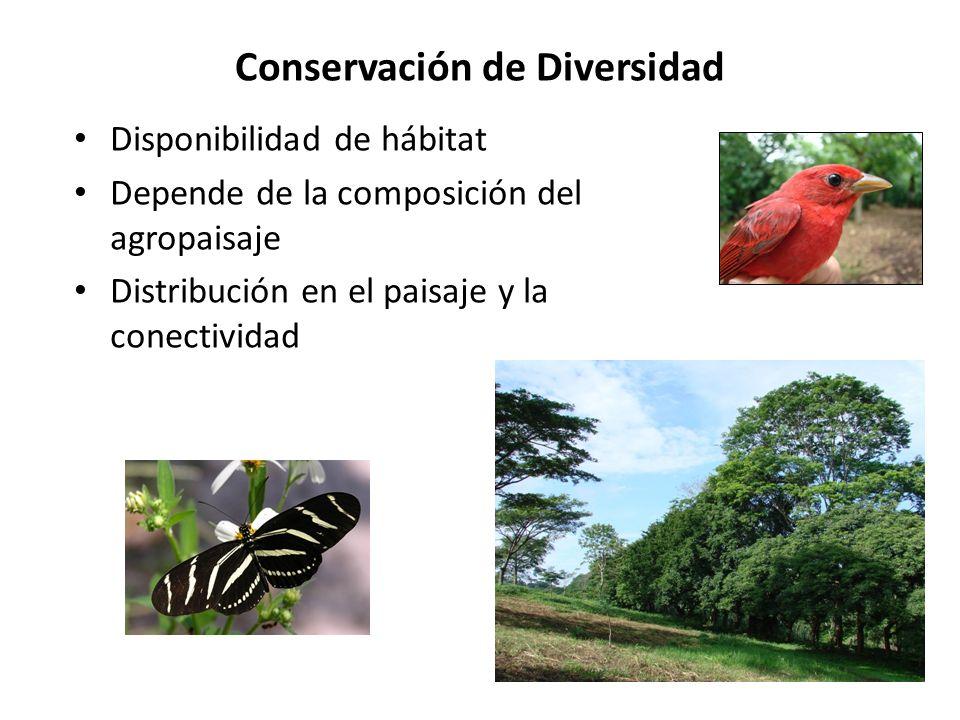 Conservación de Diversidad