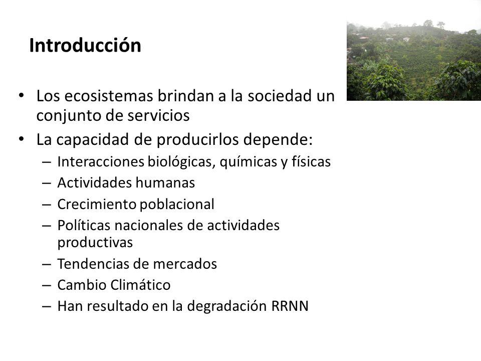 Introducción Los ecosistemas brindan a la sociedad un conjunto de servicios. La capacidad de producirlos depende: