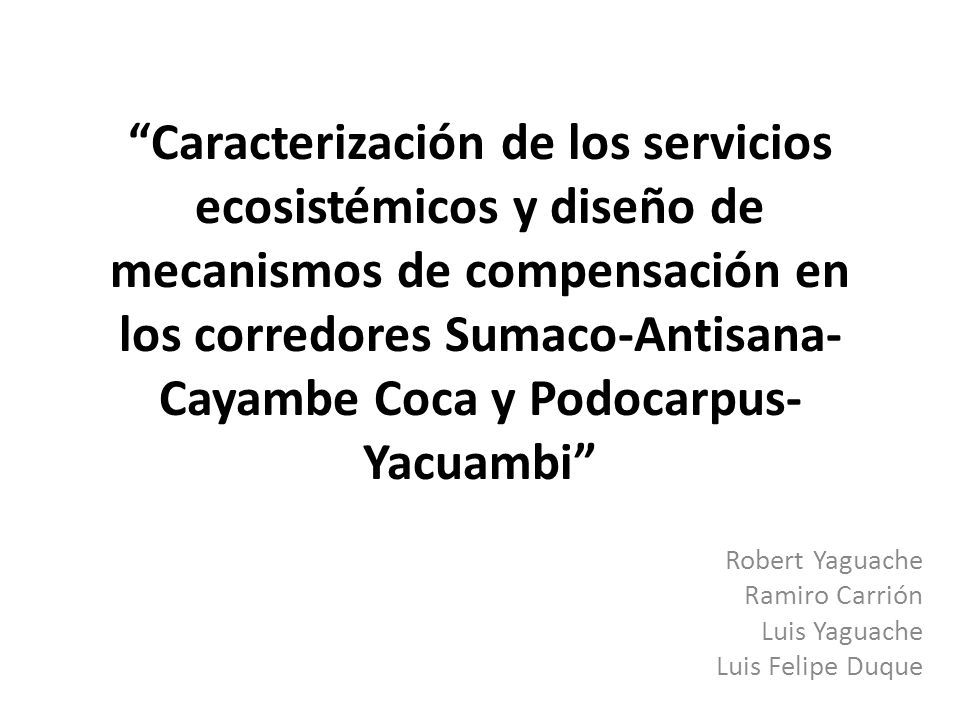Robert Yaguache Ramiro Carrión Luis Yaguache Luis Felipe Duque