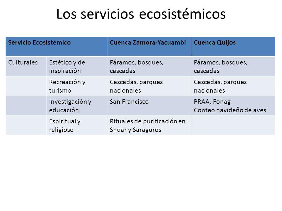 Los servicios ecosistémicos