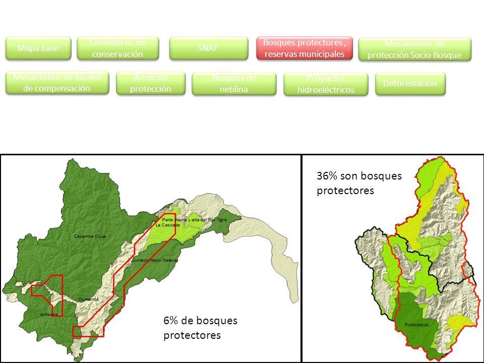 36% son bosques protectores