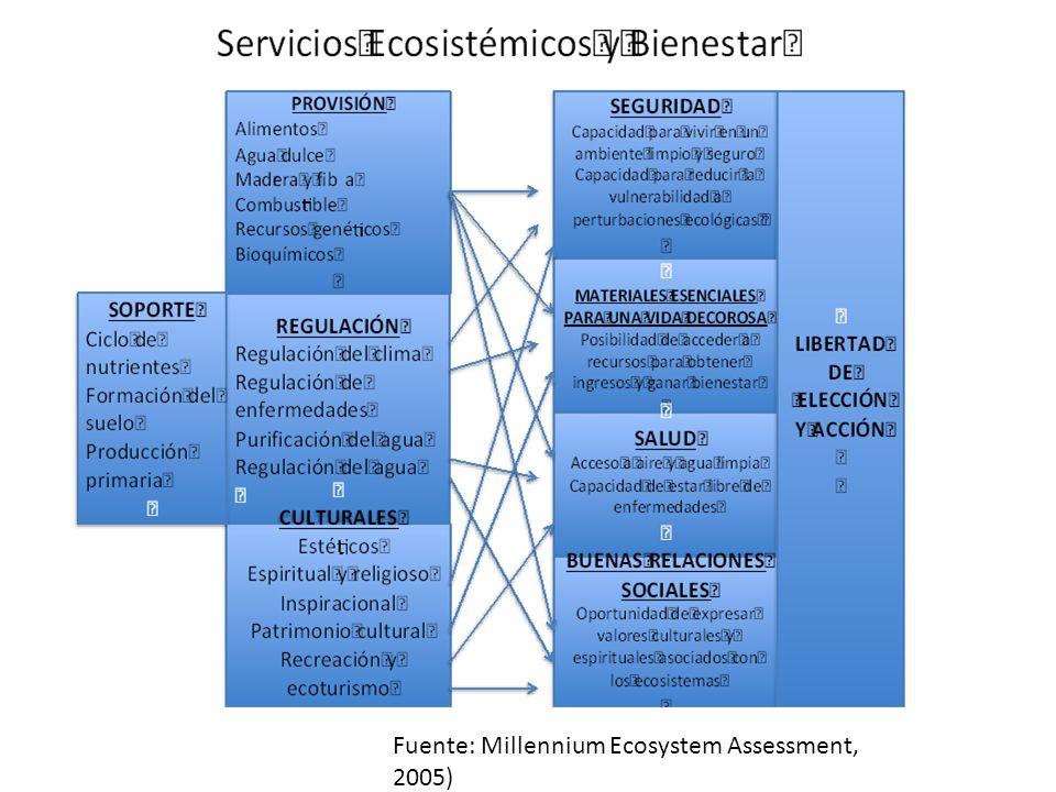 Fuente: Millennium Ecosystem Assessment, 2005)