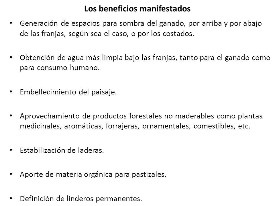 Los beneficios manifestados