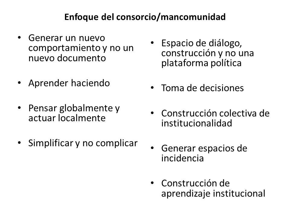 Enfoque del consorcio/mancomunidad