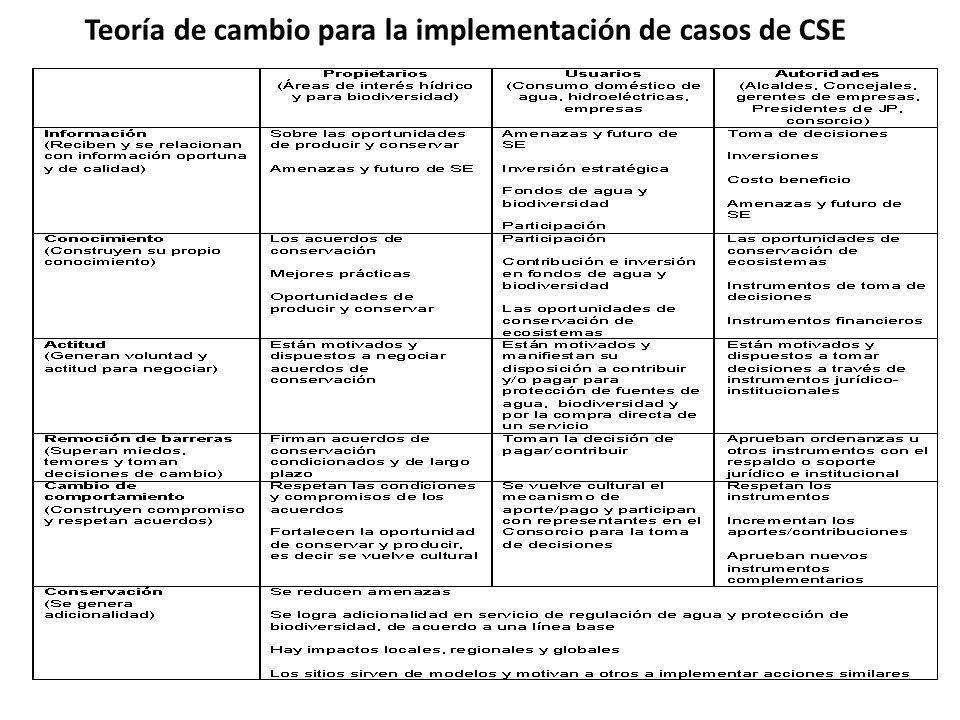 Teoría de cambio para la implementación de casos de CSE