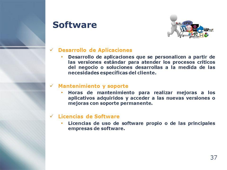 Software 37 Desarrollo de Aplicaciones Mantenimiento y soporte