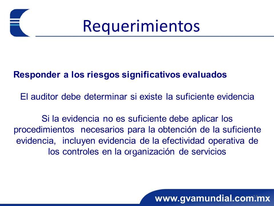 El auditor debe determinar si existe la suficiente evidencia