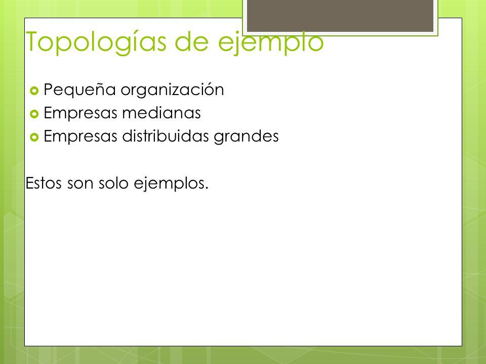 Topologías de ejemplo Pequeña organización Empresas medianas