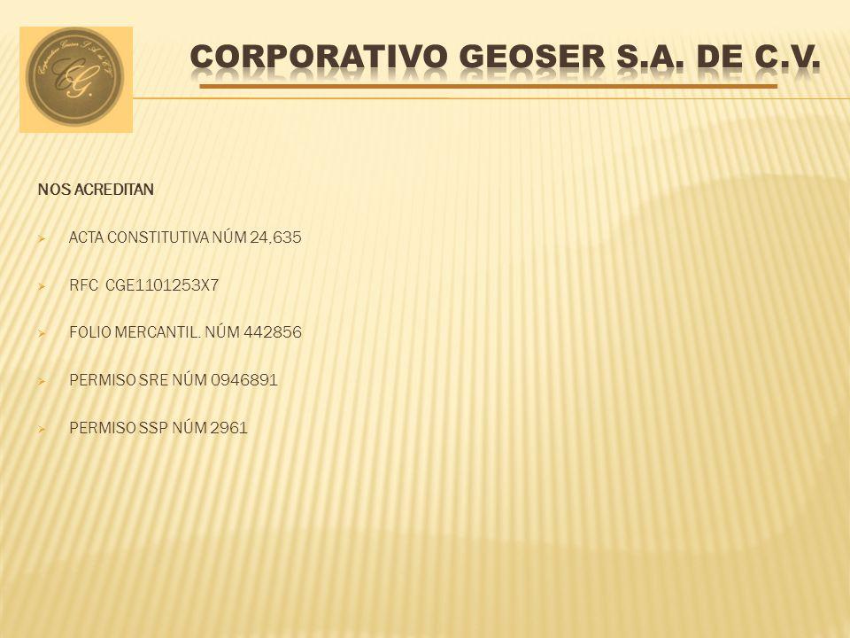 CORPORATIVO GEOSER S.A. DE C.V.
