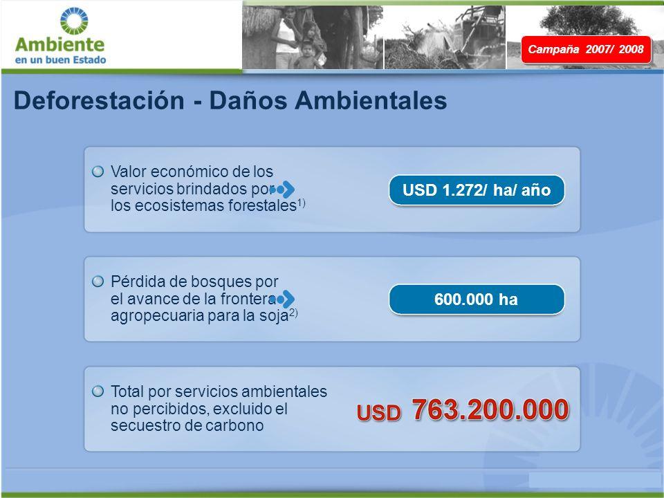 Deforestación - Daños Ambientales