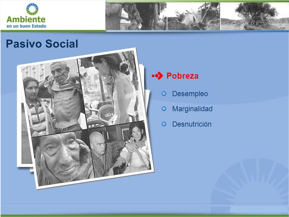 Pasivo Social Pobreza Desempleo Marginalidad Desnutrición