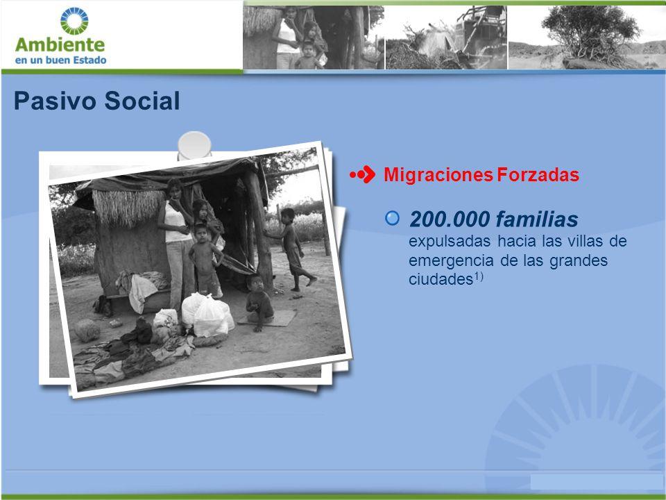 Pasivo Social Migraciones Forzadas. 200.000 familias expulsadas hacia las villas de emergencia de las grandes ciudades1)