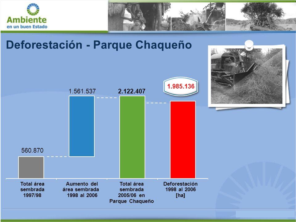 Deforestación - Parque Chaqueño