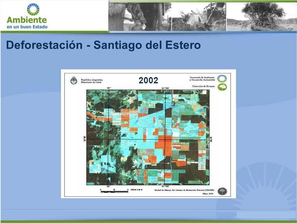 Deforestación - Santiago del Estero