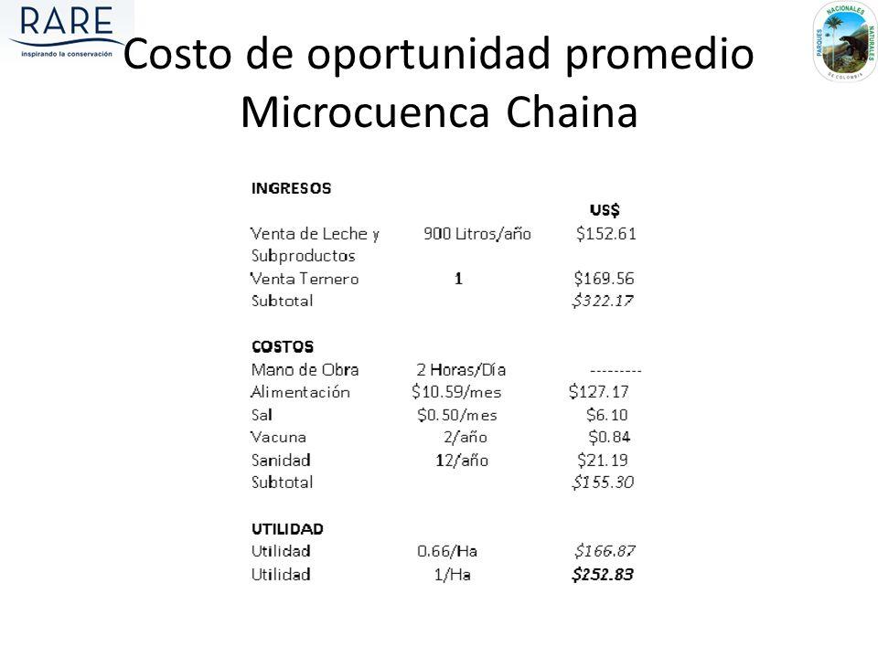 Costo de oportunidad promedio Microcuenca Chaina