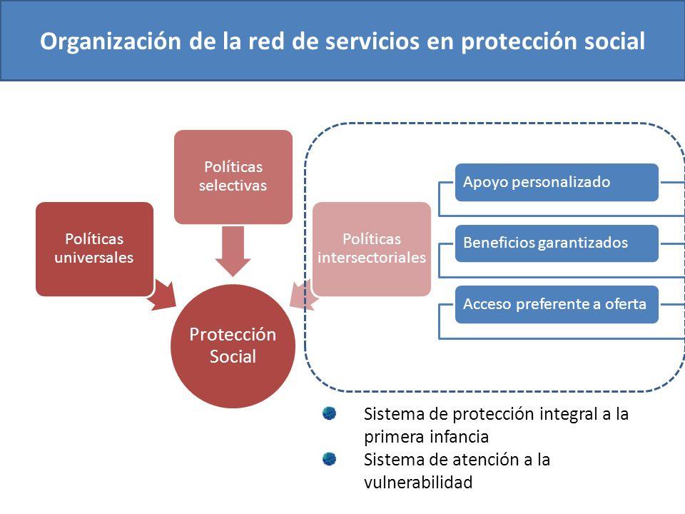 Organización de la red de servicios en protección social