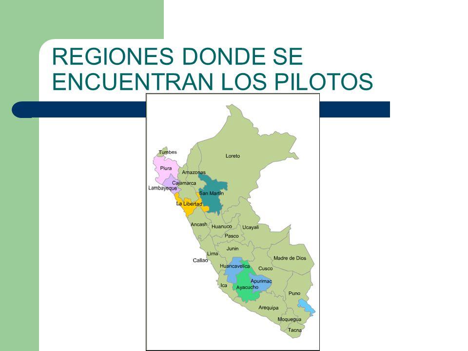 REGIONES DONDE SE ENCUENTRAN LOS PILOTOS