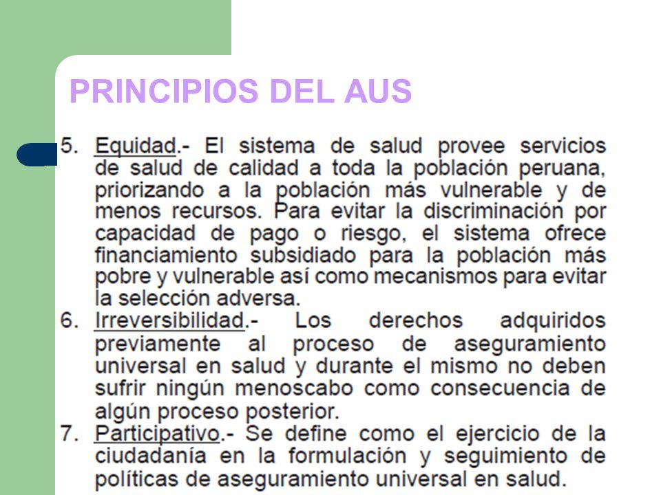 PRINCIPIOS DEL AUS