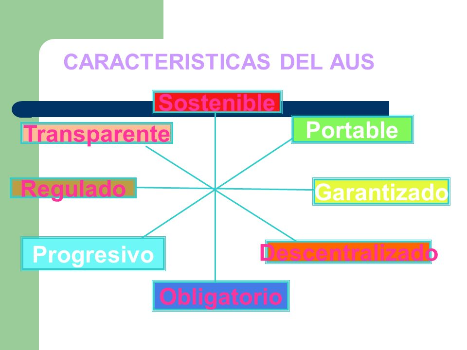 CARACTERISTICAS DEL AUS