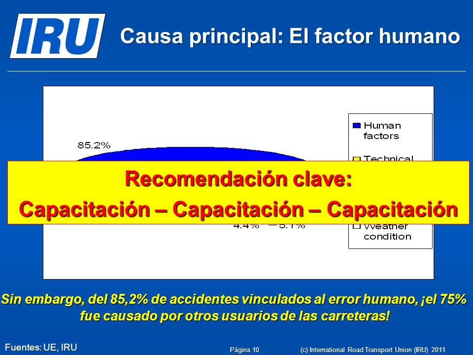 Causa principal: El factor humano