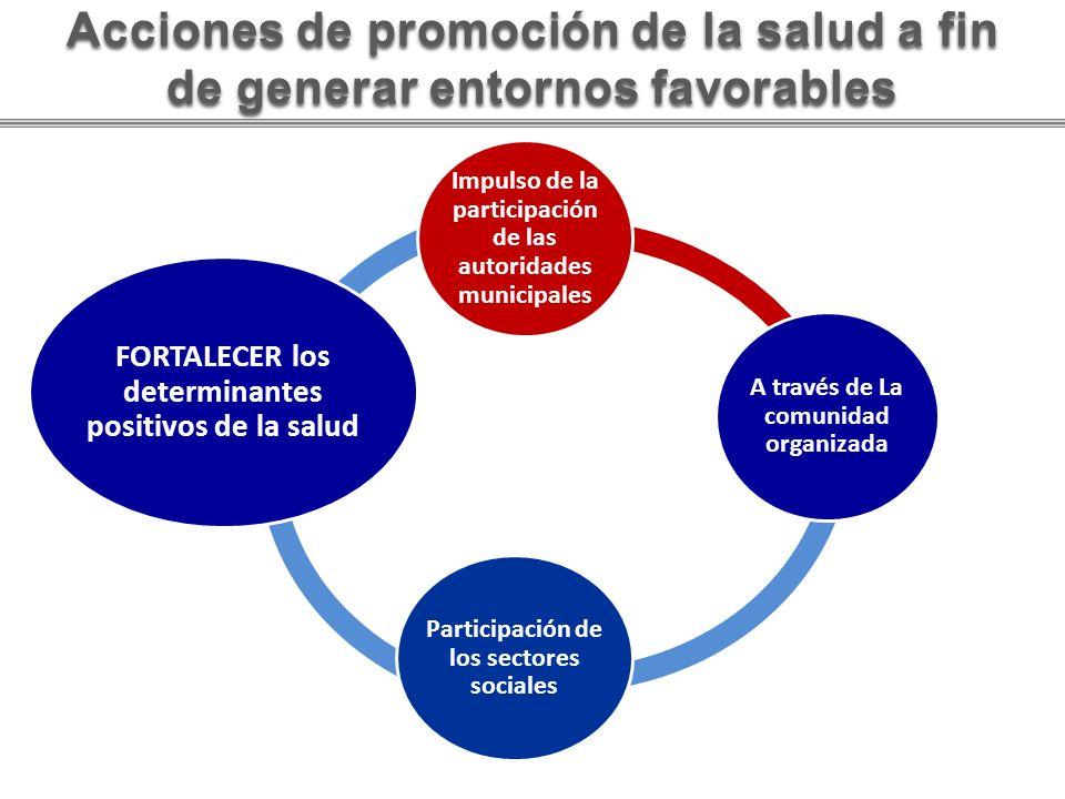 Acciones de promoción de la salud a fin de generar entornos favorables