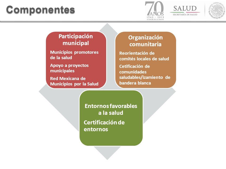 Componentes Participación municipal Organización comunitaria