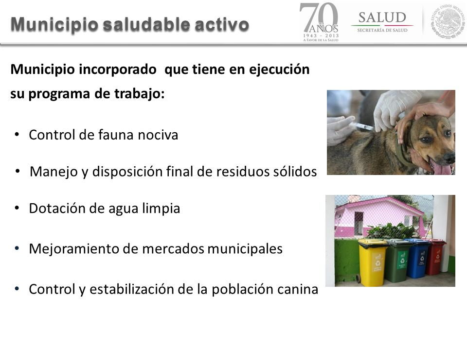 Municipio saludable activo