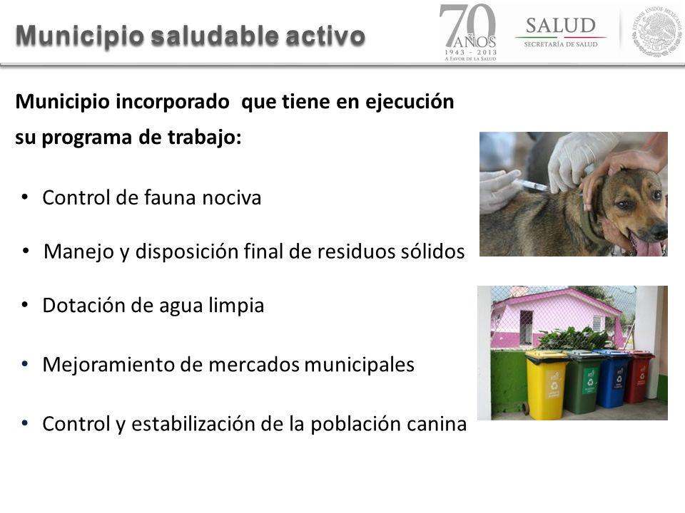 Municipio saludable activo