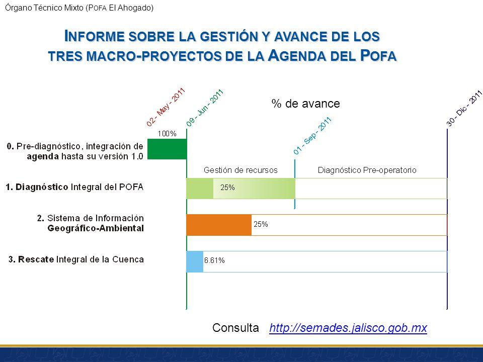 Informe sobre la gestión y avance de los tres macro-proyectos de la Agenda del Pofa
