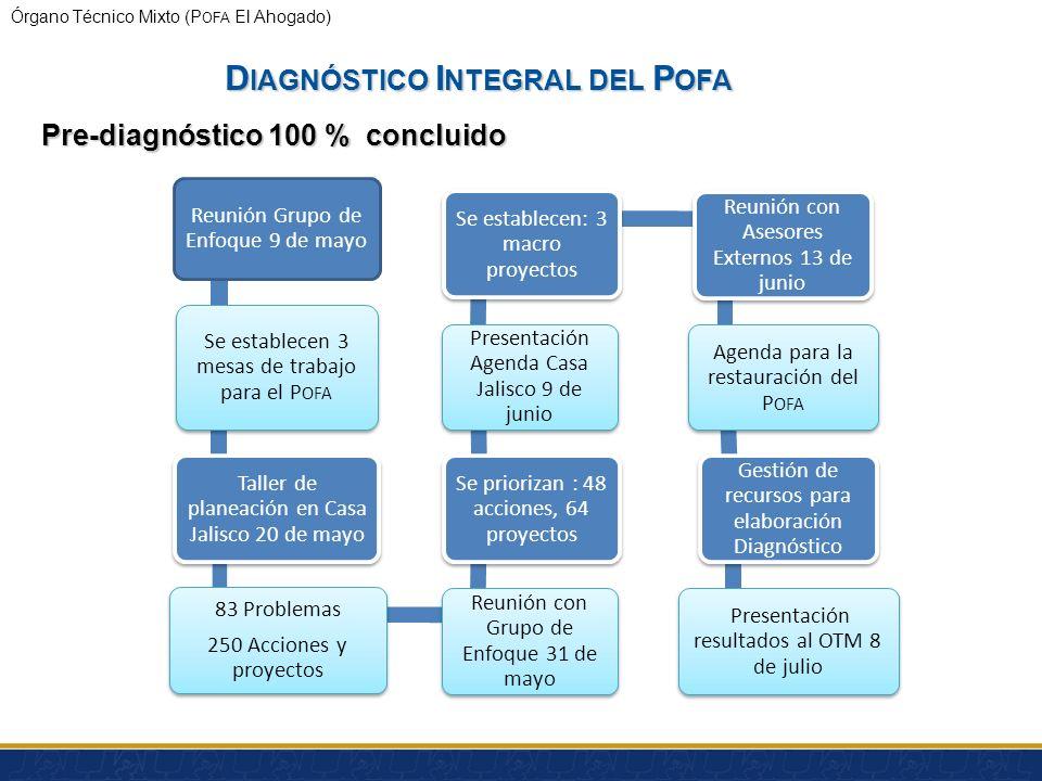 Diagnóstico Integral del Pofa